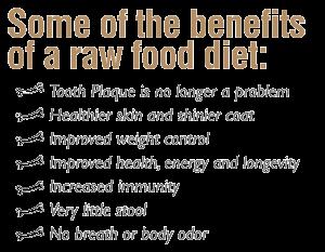 benefits raw diet